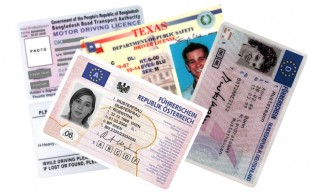 drivers-license-montage-310x193