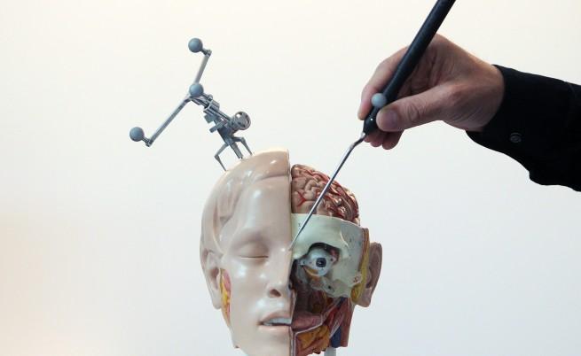 655-402-rekonstrukciia-transplantaciia-lice